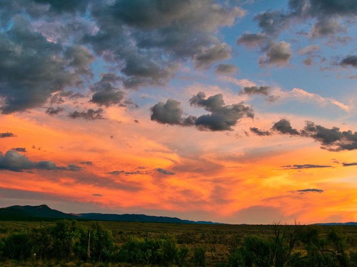 Sunset over Utah Desert Beauty In Nature Cloud - Sky Day Field Grass Growth Landscape Nature No People Orange Color Outdoors Rural Scene Scenics Sky Sunset Tranquil Scene Tranquility