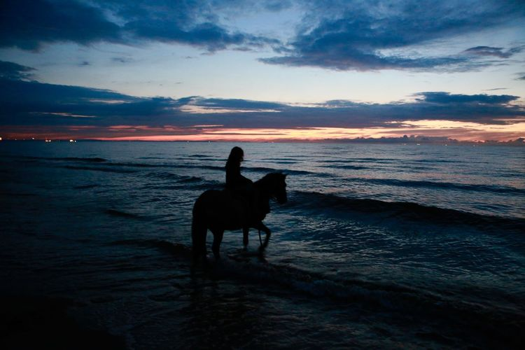 Silhouette woman on horse at beach against cloudy sky at dusk