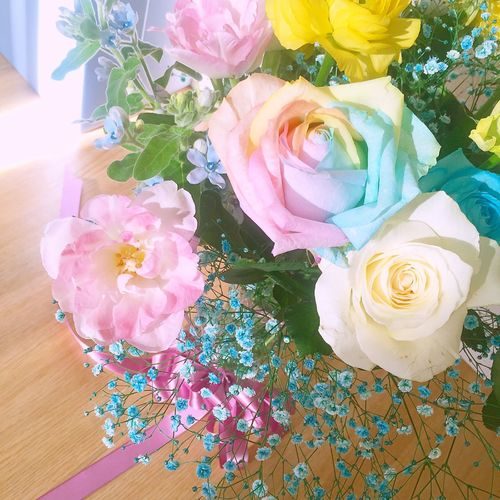 Flowers Flower Flower Collection Flowerporn Flowerlovers Flowerpower Nature Nature_collection Naturelovers Happy Birthday MyBirthday MerryChristmas Colorful Happyday Thankyou Happy People