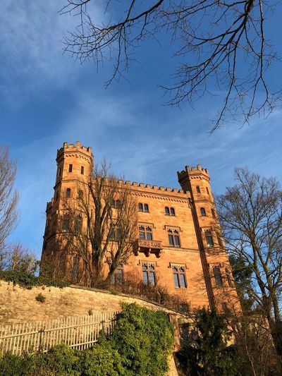 Castle Schloss Architecture Built Structure Tree History Building Exterior The Past Low Angle View Castle