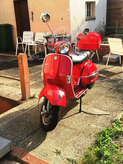 Vespapx Garden Piaggio Italianstyle