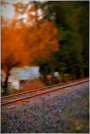 Transportation Country Photography Artistic Photography Railroad Tracks_ Travel Photography Motion Cell Phone Photography Getty+EyeEm Collection Pacific Northwest  Tadah!! EyeEm Gallery Tadaa Community Simply Amazing Countryside Landscape Arts Culture And Entertainment Streamzoofamily Scenics Amateur Photography Color Photography Illuminated Winter Cold Temperature Transportation Photography Street Snapshoot