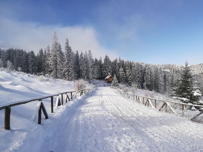 WoodLand Wood House Wooden Fence Forest Photography Church Huaweip10litephotography Tree Snow Cold Temperature Winter Snowboarding Sky Deep Snow Snowcapped Mountain Powder Snow Extreme Weather Ski Slope Skiing Ski Holiday Ski Resort  Ski Lift Snowfall Snowdrift Ski Track