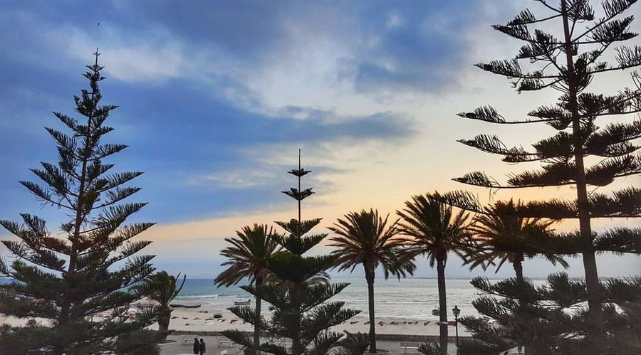 Palm Tree Tree Landscape No People Nature Sky Sunset Outdoors Sea Beach Beauty In Nature Tranquility Water Summer Silhouette Tranquility VacationsTranquil Scene Beauty In Nature Cloud - Sky Vacations Scenics Silhouette Travel Destinations Day