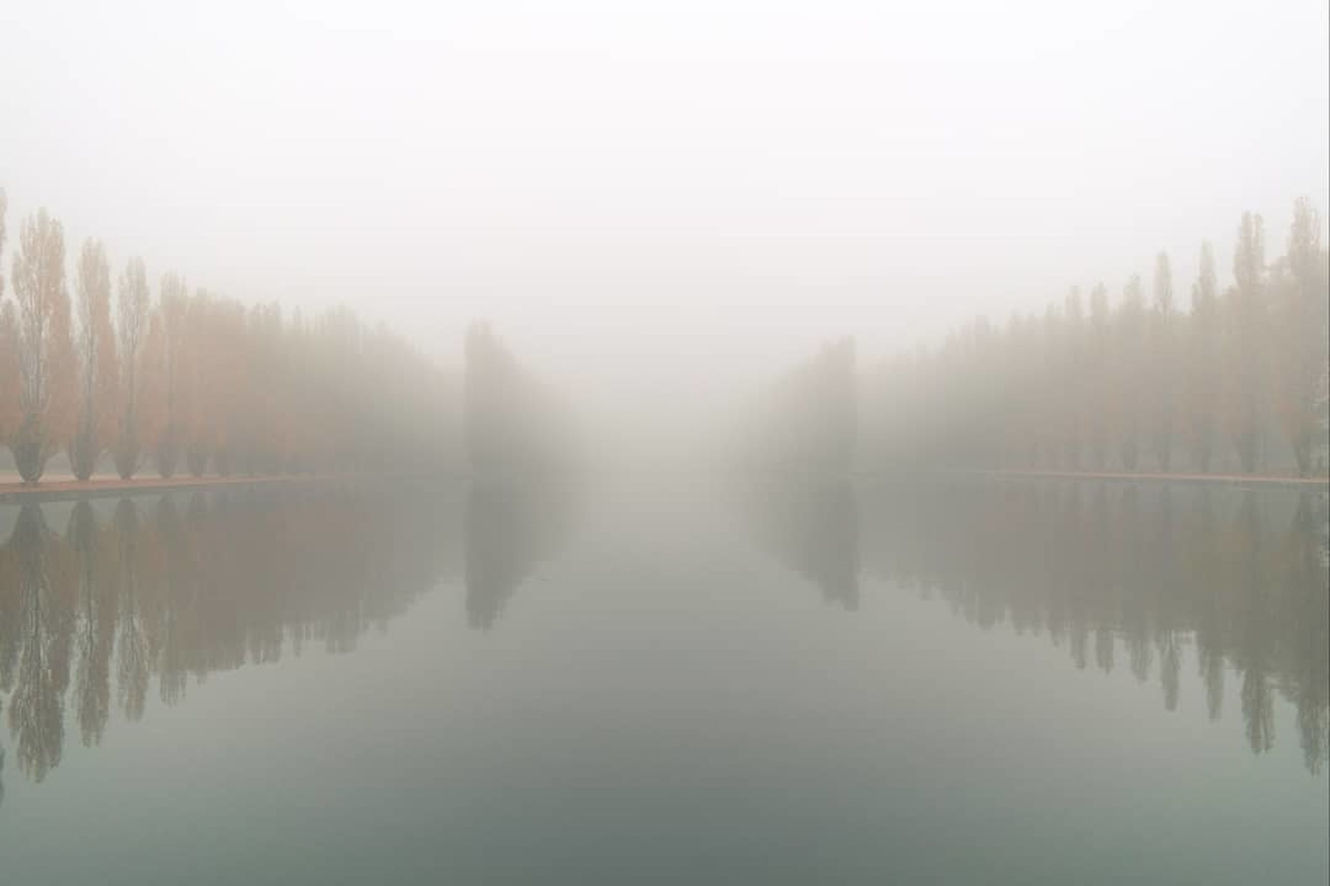 mist, fog, reflection, water, tranquility, lake, morning, tranquil scene, tree, beauty in nature, scenics - nature, nature, plant, no people, dawn, haze, sky, idyllic, forest, non-urban scene, day, outdoors, landscape, copy space, environment, sunrise, twilight