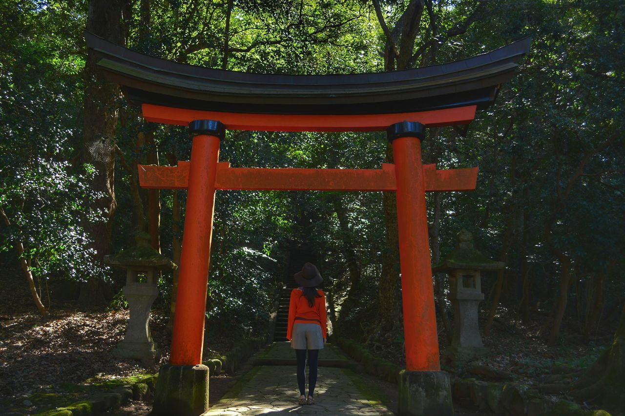 tree, religion, rear view, belief, spirituality, plant, real people, place of worship, one person, architecture, built structure, women, standing, nature, orange color, forest, lifestyles, shrine, outdoors