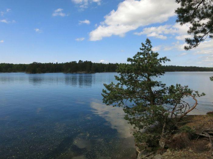 Lakeshore Forest Trekking Nature Reserve