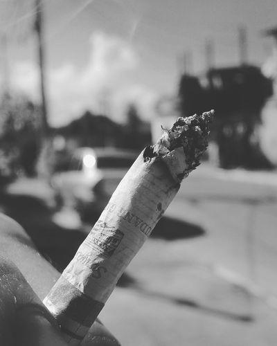 🚭 Cigarros Cigarrosdepalha Cigarros Cigarrette Butts Cigarrette