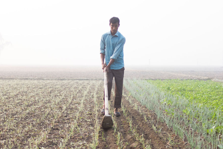 Organic Agricultural Cultivated Vegetable Land, Field in Bangladesh, Farmer Working in Cultivated Field in the Morning Agriculture Agriculture Photography Backgrounds Cultivated Field Cultivated Land Cultivated Land Crop Cloud - Sky Cultivated Land In The Morning Su Cultivation Day Farm Life Farmer's Life Farmers Man Working In Farmlan Man Working In Winter Morn Morning Sunshine Nature Photography Organic Cultivation Organic Food Organic Gardening Outdoors Photography Planting Plants 🌱 Sprouts Winter Morning