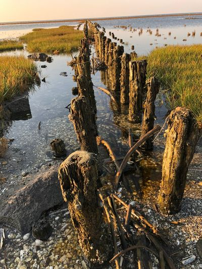 Water Sea No People Nature Beach Rock Day Scenics - Nature Solid Land Tranquility Beauty In Nature Rock - Object Sky Plant Tranquil Scene Wood - Material Reflection Outdoors Wooden Post