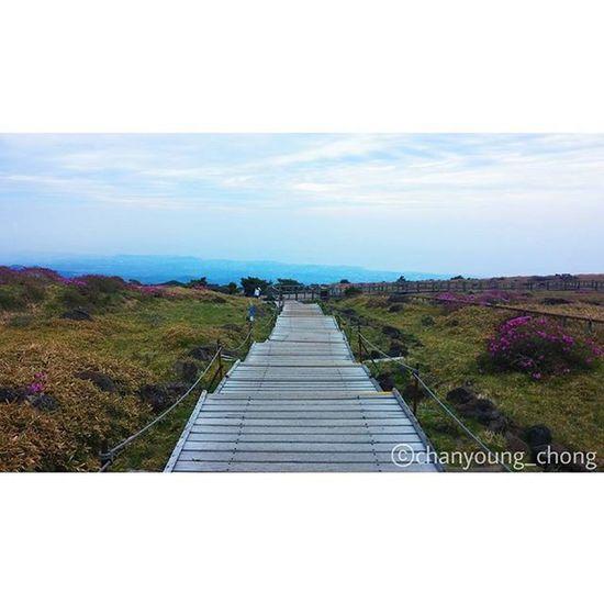 끝없는 길 Endless Road 대한민국 제주도 제주 한라산  윗세오름 오름 길 여행 사진 Korea Jejuisland Jeju Mountain Hanra Orum Road Travel Travelgram Photo