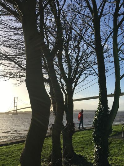 Leisure Activity Outdoors Healthy Lifestyle Nature Beauty In Nature Walker Hiker East Yorkshire Humber Bridge River Humber Hull 2017 Winter Tree Winter Blue Sky Tranquility Water
