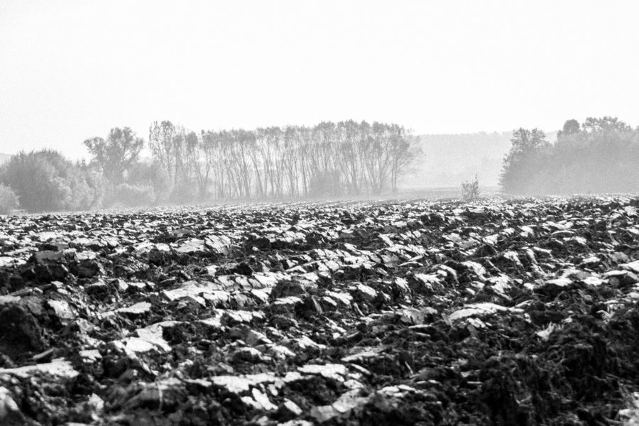 Plowed field in autumn. Autumn Black & White Day Field Foggy Landscape Nature Outdoors Plowed Power In Nature Remote Tranquil Scene Tranquility Weather Monochrome Photography