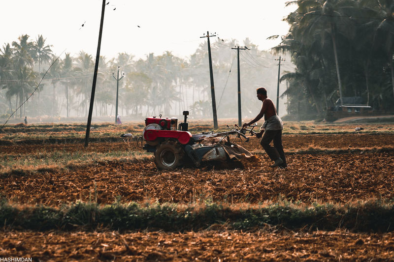 Man and tractor on field