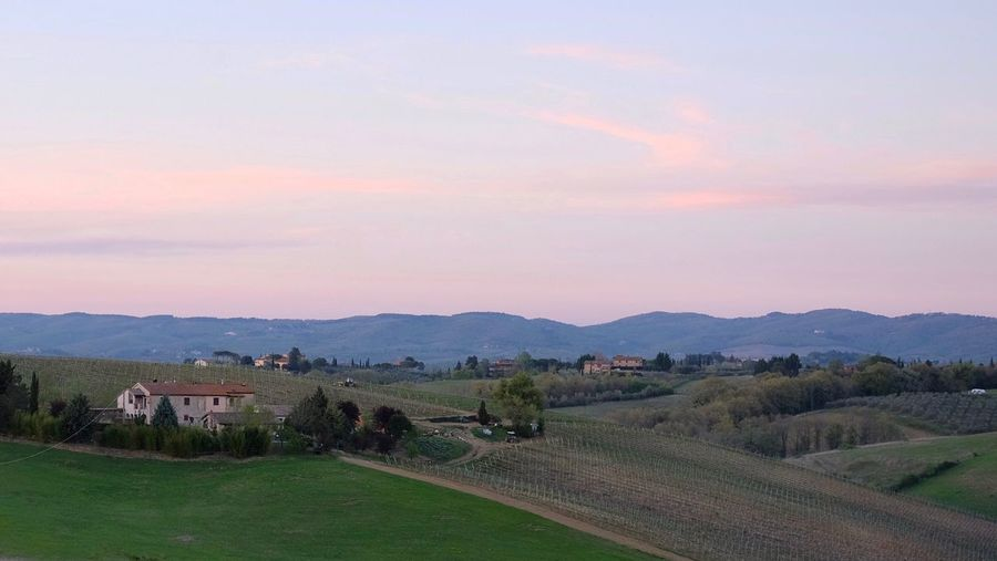 Notte prima degli esami. Nature Tranquil Scene Landscape Rural Scene No People Tuscany Outdoors Siena