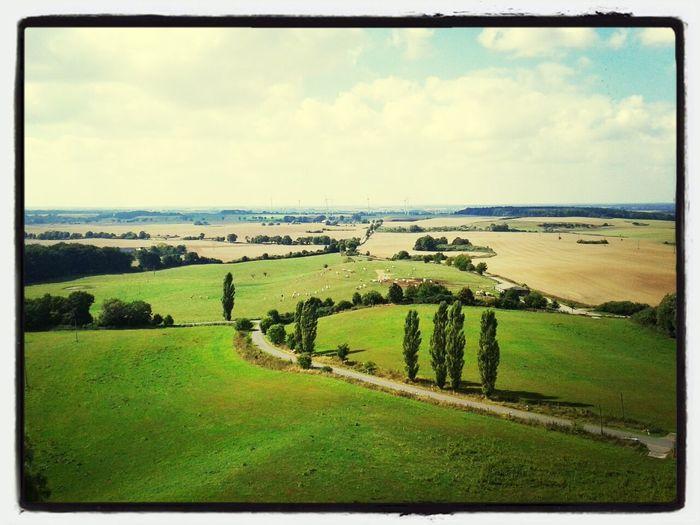 On Top Of... Helpt Landscape