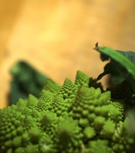 Broccoli Chaos