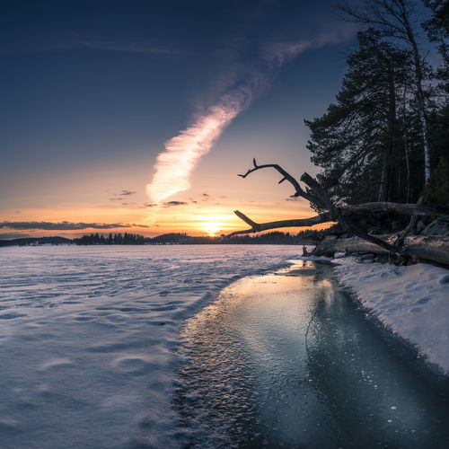 Scenic landscape with sunset at winter evening in lake southern Finland Beauty In Nature Blue Cold Colorful Sky Deadwood  Dramatic Sky Evening Frosty Ice Landscape Light And Shadow No People Orange Outdoors Sky Snow Sunset Tree Tree Trunk Trees Winter Wintry
