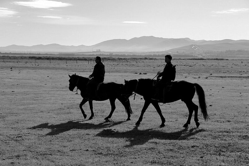 Cloudy Sky Horse And Rider Grassland Abstract Nature Photography Quiet Moments Travel Horses On The Road The Great Outdoors - 2016 EyeEm Awards Landscape Enjoying The View Landscapes Morning Light Silhouettes Silouette & Sky Sunny Day Black And White