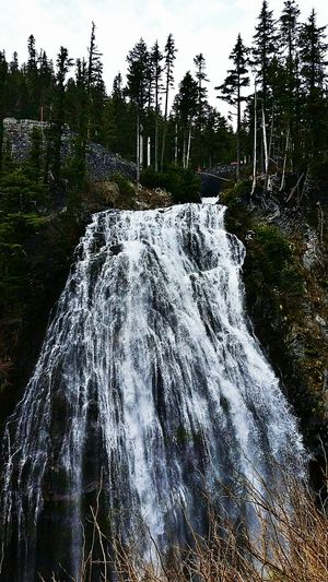 Dont go chasing waterfalls 🎶🎶🎶 Waterfall Narada Falls Washington