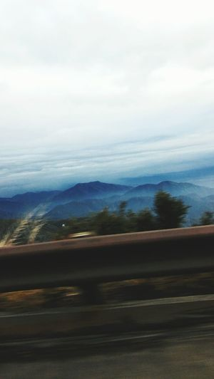 Lake Arrowhead Mountain Scenics Road Beauty In Nature Nature Landscape Tranquil Scene Mountain Range Day Tranquility No People Outdoors Sky Tree Winding Road First Eyeem Photo