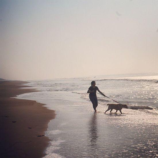 Enthusiasm. Bhubaneswar Odisha Canon1100d Fablab Dogsofinstagram Instadog Labrador Labradorsofinstagram