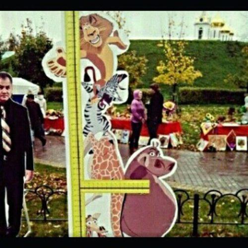 """Картоный Шойгу и ростомер с героями мультфильма """"Мадагаскар """". Дмитров СкверНаЗагорской Мультики Ростомер SquareInstaPic"""