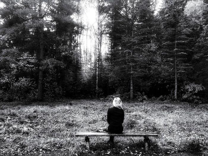 Nature Russia Photo Autumn осень единение паркМира чернобелоефото Black & White тишина Day