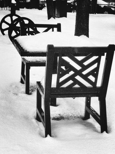 City Blackandwhite Winter Wonderland Urban Landscape