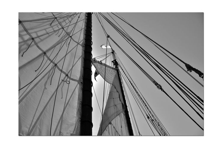 Hoisting The Sails 3 Aboard The Alma 1869 80 Ft. Scow Schooner Sailing San Francisco Bay Bnw_summer Memory's Bnw_friday_eyeemchallenge A Day On The Bay Canvas Sails Mast Ropes Monochrome Lovers Monochrome Shadows Pulleys Black & White Black & White Photography Black And White Black And White Collection  Nautical Vessel Wooden-hulled Flat-bottomed Sailing Ship Flags Sun's Glow