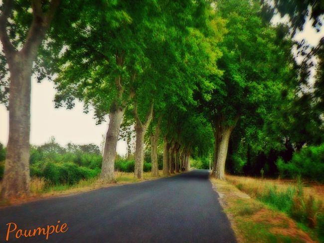 On The Road Sur La Route Road France