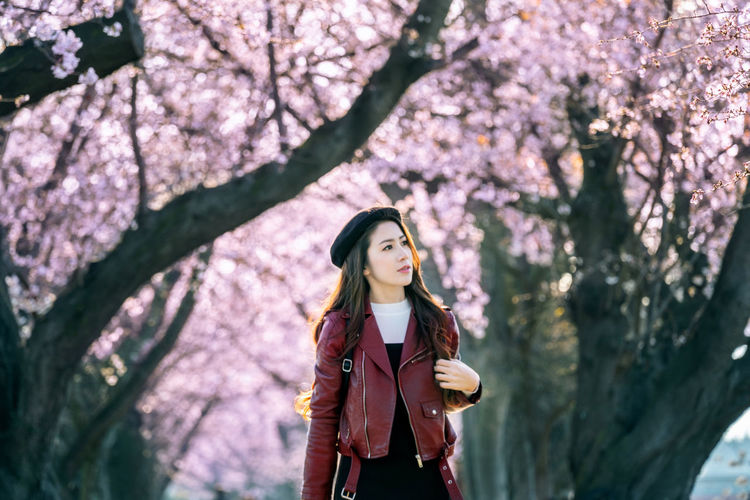 Young woman walking in cherry blossom garden on a spring day. Row cherry blossom trees in Kyoto, Japan Plant Tree One Person Young Adult Flowering Plant Real People Standing Flower Lifestyles Leisure Activity Young Women Growth Nature Freshness Casual Clothing Front View Beauty In Nature Springtime Fragility Looking Hair Hairstyle Beautiful Woman Outdoors Cherry Blossom