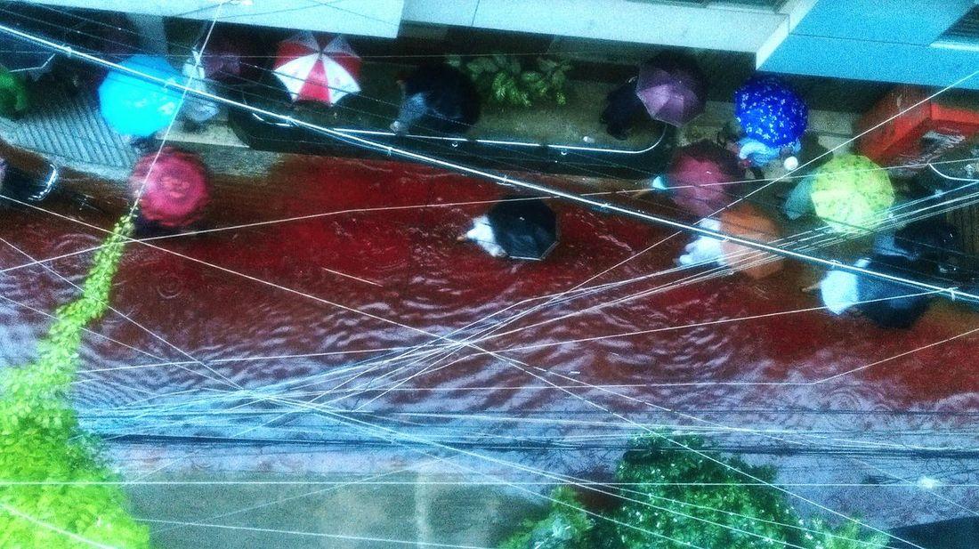 blood flood during qurbani eid