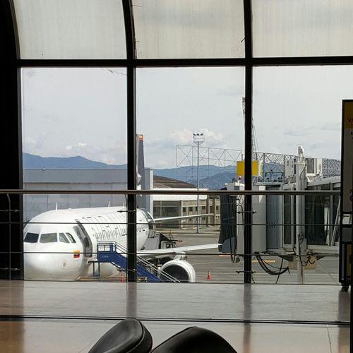 Rionegro Staralliance Avianca A320 Avianca