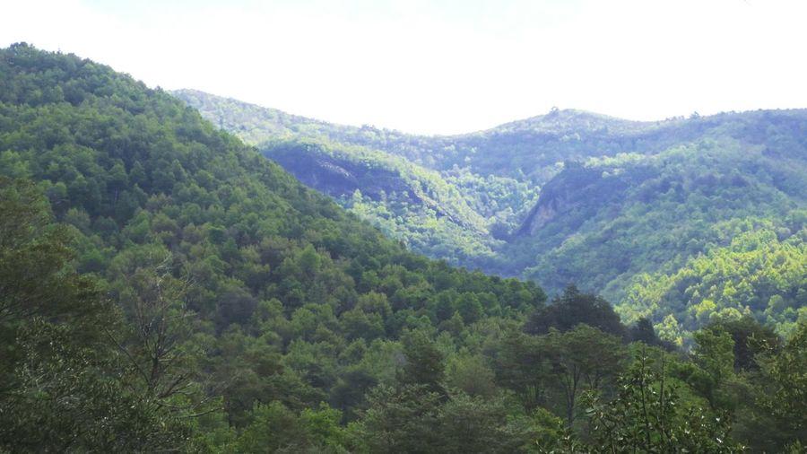 Cordillera Nature