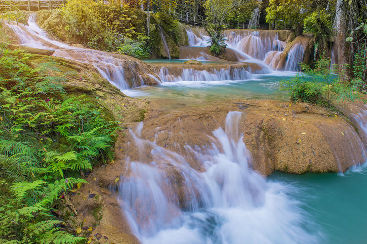 Water Scenics - Nature Tree Waterfall Beauty In Nature Forest Flowing Water Motion Plant Land Long Exposure Rock Nature Blurred Motion Flowing Rock - Object Environment Solid No People Outdoors Falling Water Stream - Flowing Water Power In Nature Rainforest