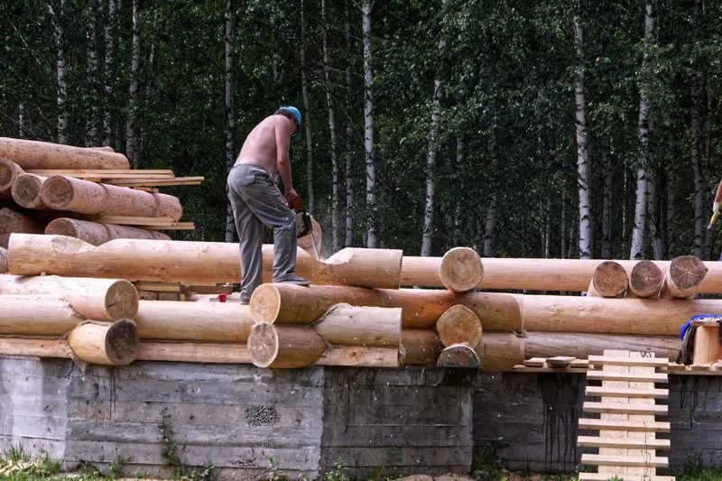 Rear view of man walking on logs in forest