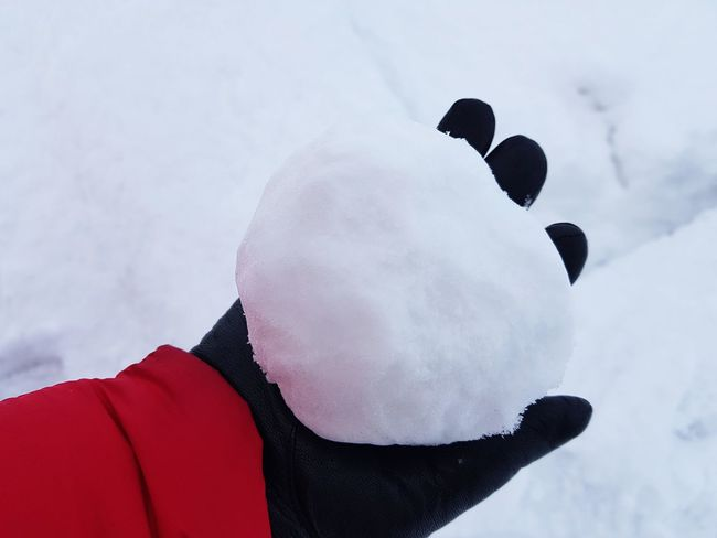 Women Hand Black Gloves Snow Ball One Hand Winter Cold Temperature Snow People Close-up One Person Warm Clothing Day