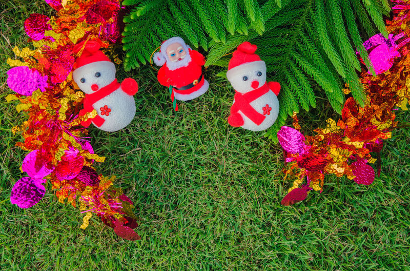 Santa Claus doll For christmas On the green lawn. Fun Happiness Leaves Of Pine New Year Ribbon Santa Claus Doll Christmastime Close-up Day Gifts ❤ Grass Green Color High Angle View Lawn Multi Colored No People Outdoors