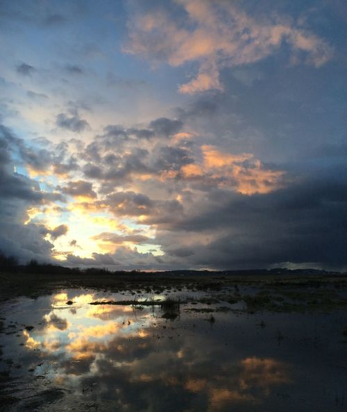 Reflection Sky Clouds And Sky French Coast Sunset Water Reflections Check This Out
