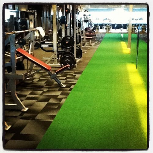 Grass patch in my gym for prowlers, not as good as the outdoors but will do. Crossfit Gym Grass Prowlers painexercise