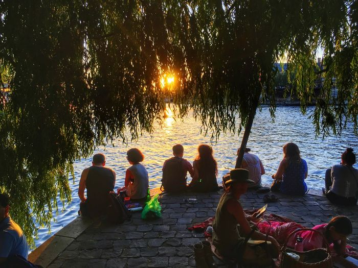 Group of people relaxing on tree