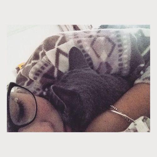 Gatto Freddo Sonno Occhiali ❣
