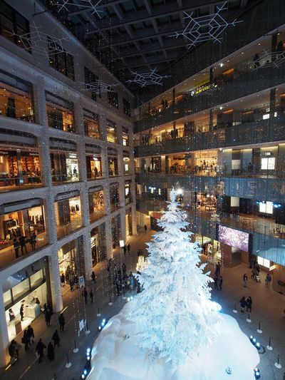 Snow Snow ❄ Tree Christmas Tree Christmastree Best Christmas Lights Illuminated Illumination White Light Lights Tokyo Tokyo,Japan KITTE Architecture Building Post Office Tokyo Station Christmas Around The World