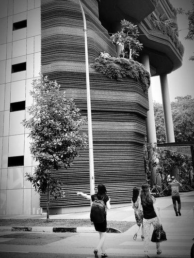 Hotel Crossing Singapore Streetphotography Shades Of Grey Monochrome Collection Monochrome Eyeem Monochrome