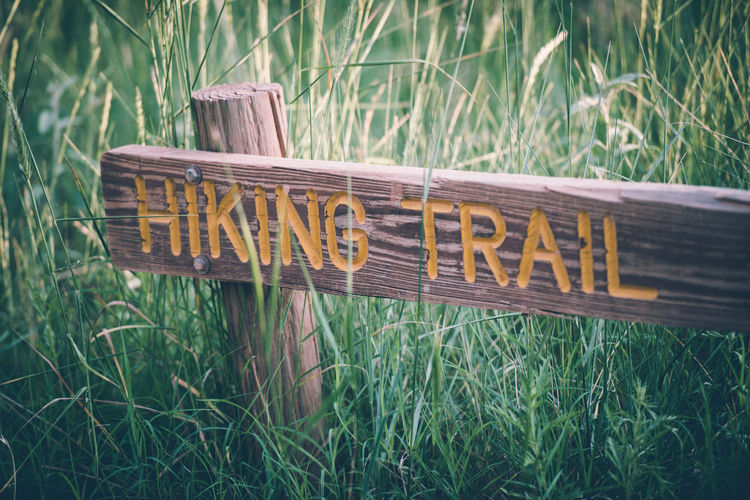 View of wooden hiking trail sign by grass