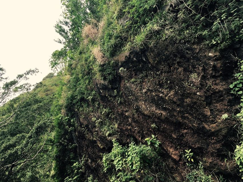 Check This Out Taking Photos Nature Outdoors Physical Geography Rock Rock Formation Geology
