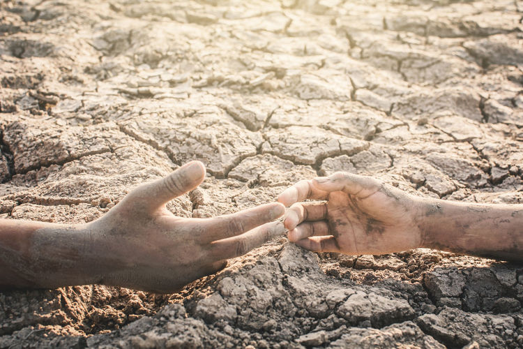 Cropped image of people with muddy hands on ground