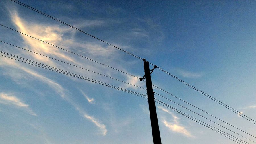 Connection Low Angle View Electricity  Power Line  Cable Technology Power Supply Animals In The Wild Sky Electricity Pylon Fuel And Power Generation Wildlife Animal Themes Bird Day Perching Cloud Nature High Section Outdoors