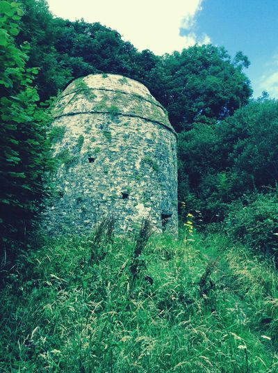 Dovecote Manorbier Pembrokeshire Wales Tree Green Color Outdoors No People Day Plant Beauty In Nature Scenics Tree Summer Camping Hikingadventures Coastal Trail